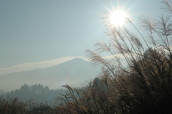 夏焼城ヶ山