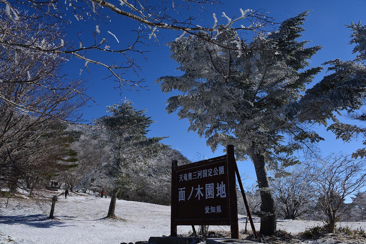 面ノ木原生林
