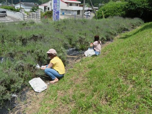 「どんぐり工房」自然体験・環境学習